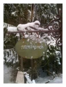 Miniranch-Bild 67